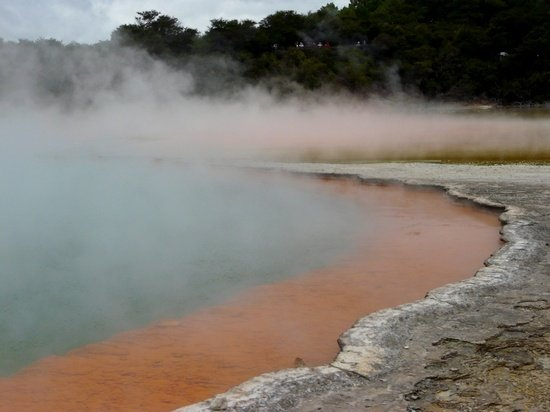 Rotorua New Zealand thermal pools