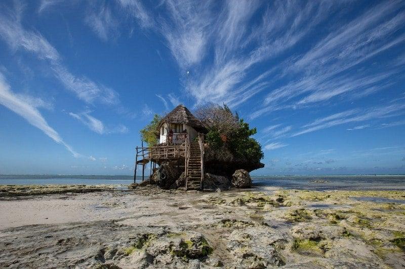 Intrepid Tanzania safari tour review